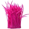 Goose Feather Biots Strung 6-8in 30g Hot Pink (22in)